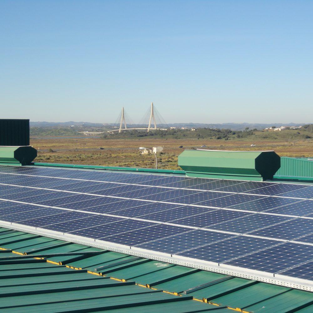 Solar Almonte