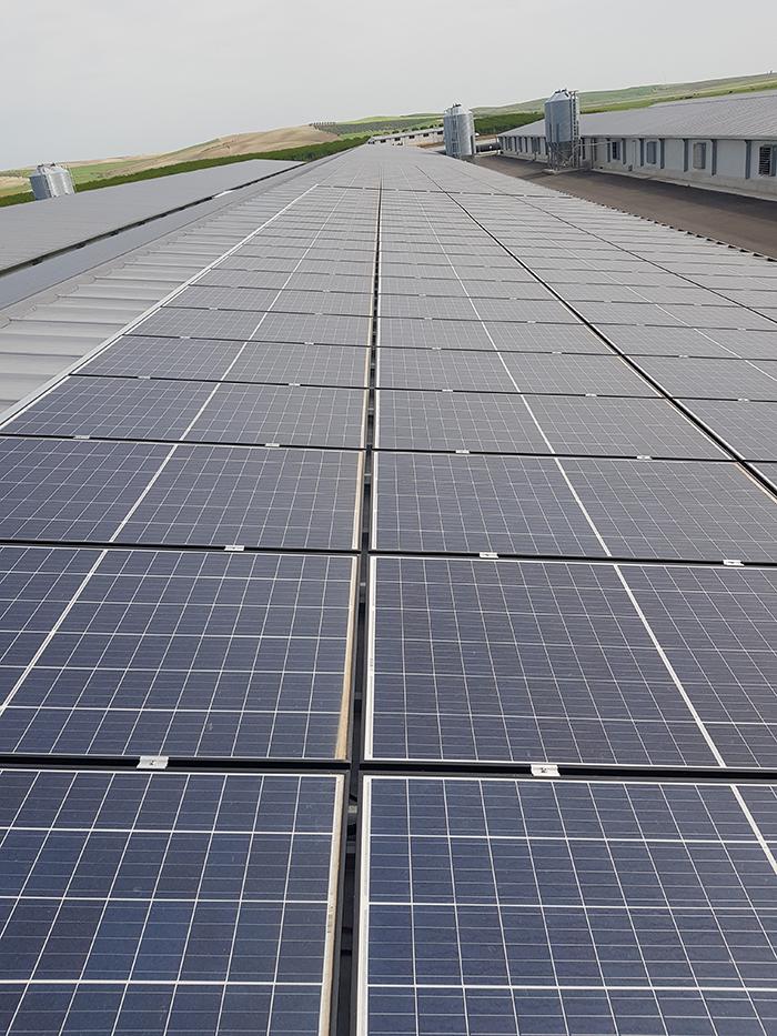 Instalación de placas solares de autoconsumo en la Granja La Pastora