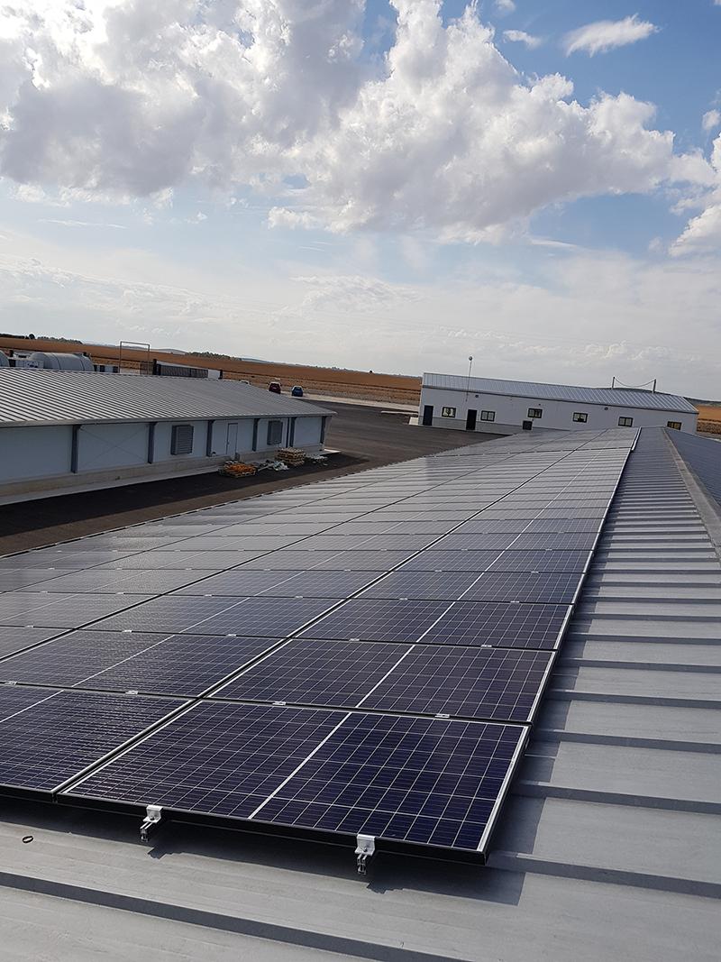 Instalación de placas solares de autoconsumo en la Granja Las Medianas